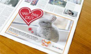 Kampagne TierQuarTier Wien