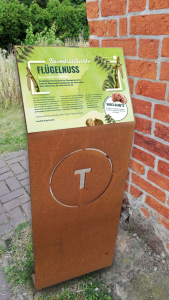 Baumkunstwerke-Tafeln Tulln