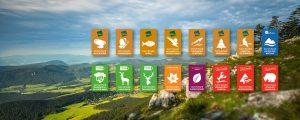 Die Markenarchitektur der Naturparke Niederösterreich