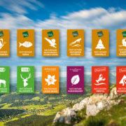 Naturparke_NÖ_Logos